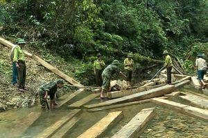 Quảng Bình: Kỷ luật hàng loạt cán bộ vụ rừng phòng hộ bị 'xẻ thịt'