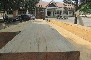 Chuyện ngược đời ở Đắk Lắk: Xã trắng đêm giữ gỗ, chủ rừng lại để mất gỗ
