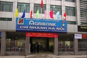 Phản hồi bài viết: 'Agribank chi nhánh Hà Nội thu giữ tài sản và giữ người trái luật?'