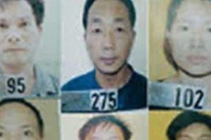 Truy tố 12 đối tượng trong đường dây 515 bánh heroin từ Lào vào Việt Nam