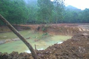 Phải xử nghiêm hành vi vi phạm rừng đặc dụng