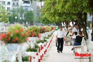 Phố đi bộ Trịnh Công Sơn: Đã sẵn sàng đón khách