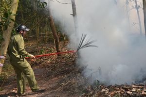 Huyện Sơn Tịnh diễn tập phòng cháy chữa cháy rừng