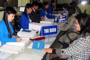 Vĩnh Phúc: Phấn đấu năm 2020 trên 35% lực lượng lao động tham gia BHTN