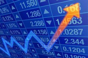 Thị trường chứng khoán đột ngột khởi sắc, nhiều cổ phiếu tăng cao