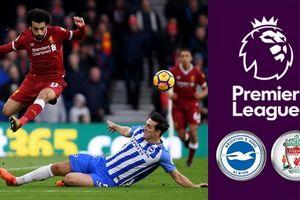 Liverpool - Brighton: Đội hình xuất phát của Lữ đoàn đỏ với điệp vụ lọt vào top 4 Premier League
