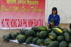 Quảng Nam: Nhiều tổ chức Hội đồng loạt ra quân kêu gọi 'giải cứu' dưa