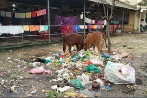 Thừa Thiên Huế: Dân khổ sở với bãi rác nằm sau chợ