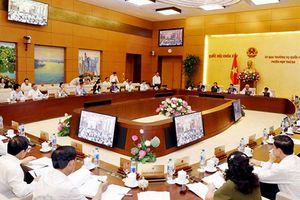 Khai mạc Phiên họp thứ 24 của Ủy ban Thường vụ Quốc hội