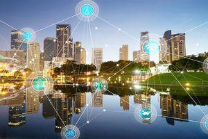 Bỉ chia sẻ kinh nghiệm quy hoạch đô thị và thành phố thông minh với Hà Nội