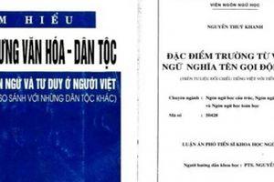 GS Trần Ngọc Thêm: 'Ông Nguyễn Đức Tồn đạo văn đã rõ ràng'