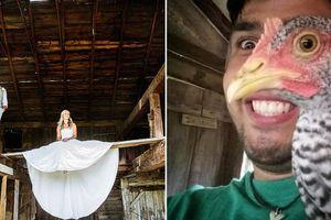 18 bức ảnh trùng hợp đánh lừa thị giác khiến bạn 'điên đầu'