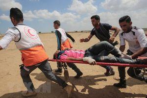 Bạo lực ở Dải Gaza làm ít nhất 52 người Palestine thiệt mạng và hơn 2.400 người bị thương