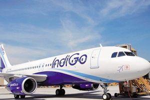 Hãng hàng không lớn nhất Ấn Độ lên kế hoạch mở đường bay tới Việt Nam
