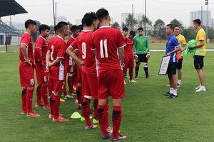 U19 Việt Nam tập trung tại Hà Nội, chuẩn bị cho giải Đông Nam Á