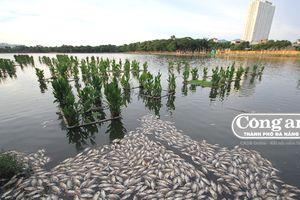 Gần 13 tỷ đồng nạo vét 112 nghìn khối bùn hồ Công viên 29-3