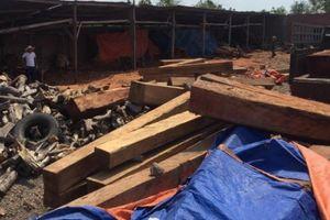 Bắt khẩn cấp giám đốc doanh nghiệp, tạm giữ hơn 60m3 gỗ
