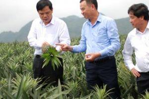 Bộ trưởng NNPTNT: 6 chuyển biến sau 5 năm tái cơ cấu nông nghiệp