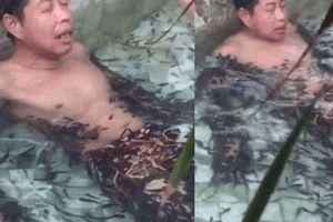 Đi massage bằng cá, thanh niên làm chết cả đàn phải đền trăm triệu