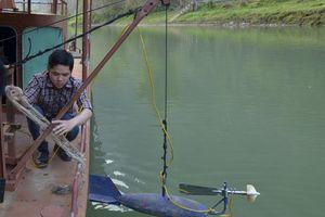 Nâng cao năng lực dự báo bão của Việt Nam
