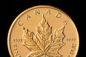 Dự đoán lạc quan về vàng, sẽ tăng giá trong ngắn hạn