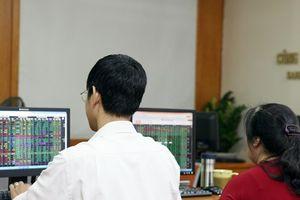 Ba triệu cổ phiếu Xây lắp và dịch vụ Sông Đà giao dịch trên UPCoM
