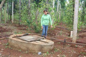 Nghi vấn giếng nước bị đổ thuốc trừ sâu khiến 1 người nhập viện