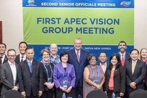 Diễn đàn APEC thành lập nhóm xây dựng tầm nhìn sau năm 2020