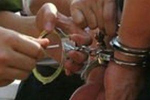 Chuyện nữ cảnh sát dùng 'độc chiêu' bắt trùm giang hồ đất Cảng