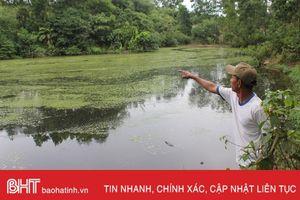 Trại lợn 'bủa vây' nguồn nước, dân Trung Sơn sống trong ô nhiễm