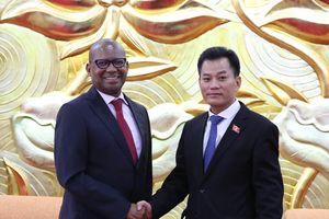 Thúc đẩy giao lưu nhân dân hai nước Việt Nam và Nam Phi