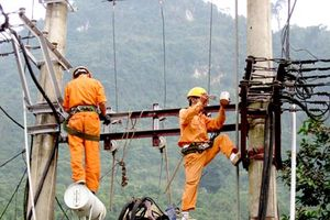 Điện lực Bạc Liêu phản hồi kiến nghị cấp điện tại ấp Ninh An