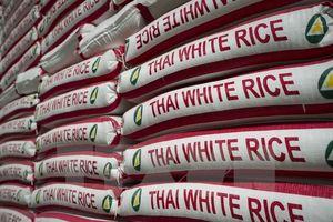 Thái Lan đấu thầu 43.700 tấn gạo tồn kho