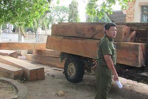 Vụ để mất gỗ tang vật ở Đắk Lắk: Đề nghị kiểm điểm trách nhiệm lãnh đạo công ty