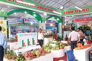 Kỳ vọng hút 1,6 triệu lượt khách đến Lễ hội trái cây Nam Bộ