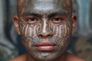 Có bao nhiêu thành viên băng đảng MS-13 ở Mỹ?