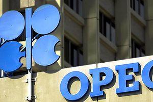 Giá dầu tăng vọt sau tín hiệu từ OPEC