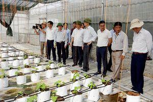 Phó Chủ tịch UBND tỉnh Đinh Viết Hồng kiểm tra tiến độ nông thôn mới ở Yên Thành