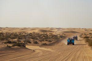 Trung Quốc trồng lúa trên sa mạc ở Dubai