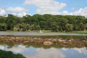Hồ Than Thở biến thành... ao