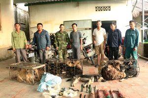 Phá nhiều đường dây trộm chó chuyên nghiệp tại Hà Tĩnh