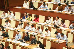 Thảo luận về dự thảo Luật Chăn nuôi: Không để phát sinh thêm thủ tục hành chính