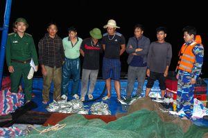 Ngăn chặn tình trạng 'tận diệt' hải sản trên vùng biển Hà Tĩnh