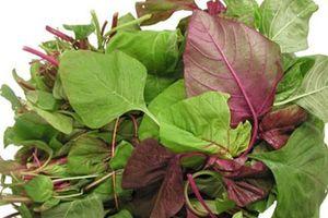 6 tác dụng quý, phòng ngừa nhiều loại bệnh của rau 'trường thọ'