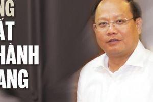 Đường công danh của Phó Bí thư Thường trực TP.HCM Tất Thành Cang