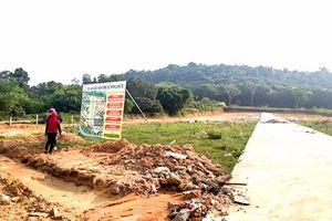 Đón đầu đặc khu kinh tế: Đất đai chuyển nhượng thiếu kiểm soát