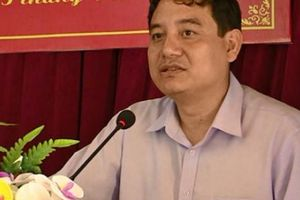 Bí thư Tỉnh ủy Nghệ An chỉ đạo xử lý vụ Cty Trung Đô san rừng