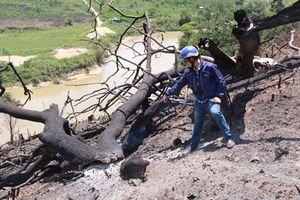 Kỷ luật 4 cán bộ kiểm lâm vụ Phá rừng Khu Bảo tồn thiên niên Nam Kar