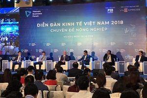 Đâu là con át chủ bài của nông nghiệp Việt Nam?