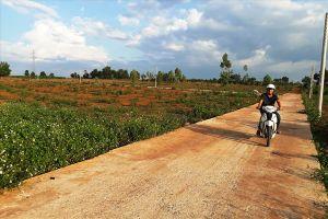 Loạn 'phân lô, bán nền' trên đất nông nghiệp Pleiku